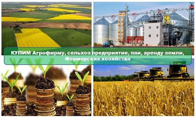 Бесплатная доска объявлений сельское хозяйство доска бесплатных объявлений без регистрации трубы больших диаметров